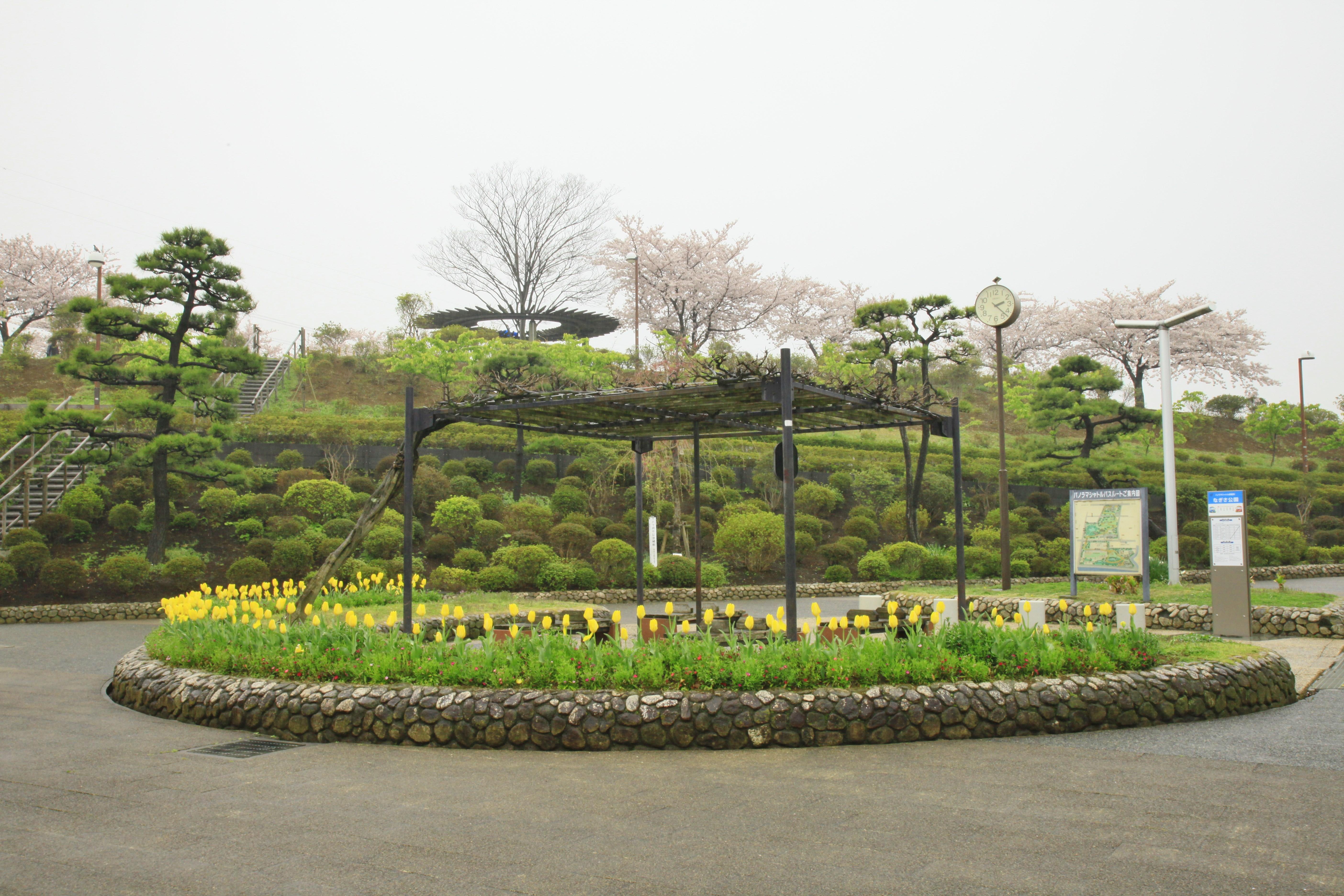 綜合レクリエーション公園