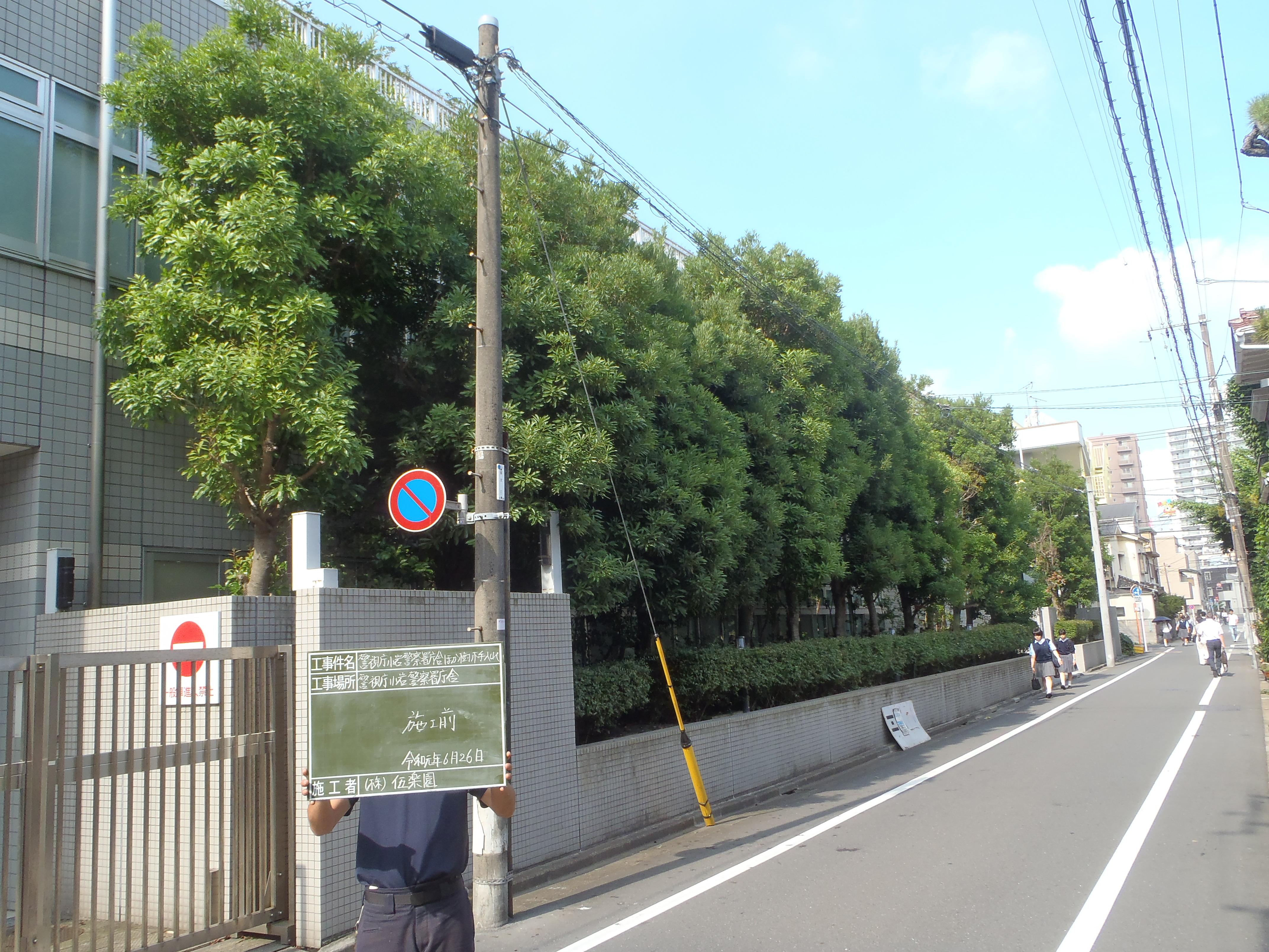 小岩警察署 樹木剪定