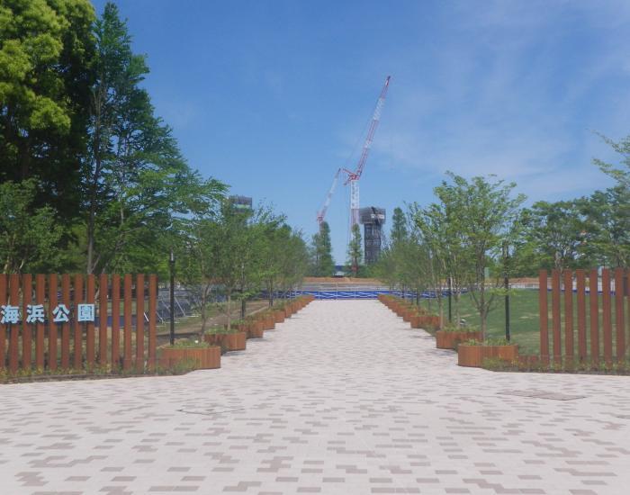 平成29年度辰巳の森海浜公園修景整備工事